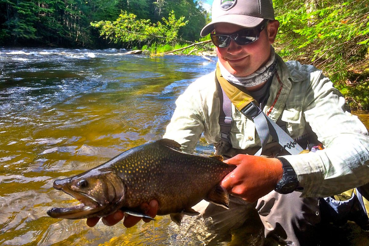 New hampshire 39 s best vacation cabins book today for Best trout fishing in new hampshire