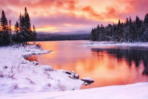 Lopstick Holds Winter Photo Contest