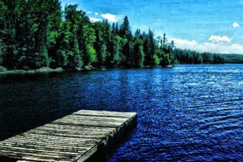 Lake Francis Image